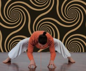 Anukalana Yoga 4B