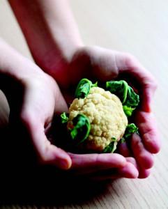 cancro il cibo che cura