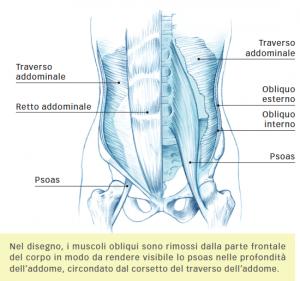 Strappo e Stiramento dei Muscoli Ischiocrurali