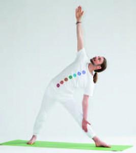 Ananda Yoga 2