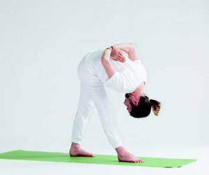 Ananda Yoga 4