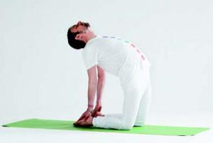 Ananda Yoga 5