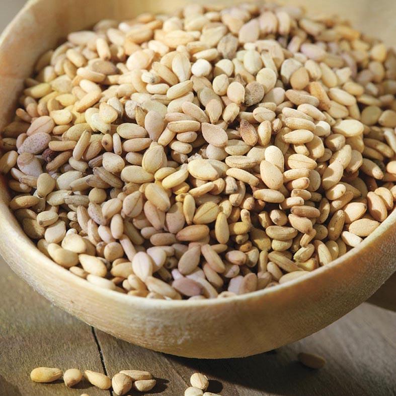 Sesame seeds --- Image by © Chassenet/photocuisine/Corbis