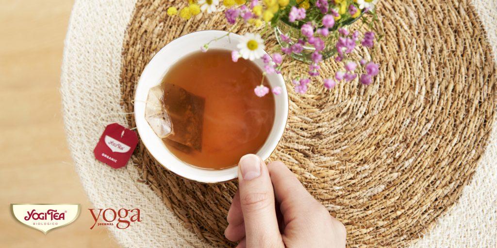 Yogi-Tea-Tour